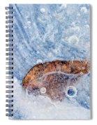 Season Past Spiral Notebook