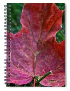 Seasonal Changes Spiral Notebook