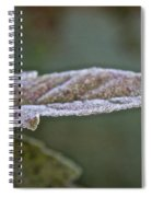 Seasonal Frost Spiral Notebook