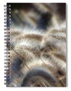 Seasonal Softness Spiral Notebook