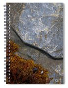 Seaweed And Rock Spiral Notebook