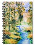 Secret Rivers Spiral Notebook