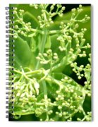 Sedum Droplets Spiral Notebook
