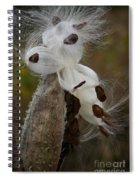 Seed Face Spiral Notebook