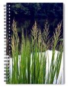 Seedy Grass Spiral Notebook