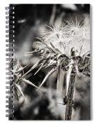 Seedy Neighborhood In Bw Spiral Notebook