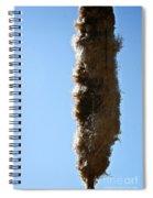 Seedy Spiral Notebook