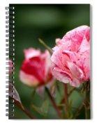 Sentimental Rose Spiral Notebook