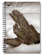 Sep34 Spiral Notebook