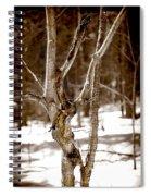 Sep36 Spiral Notebook