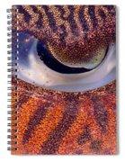 Sepia Cuttlefish Spiral Notebook