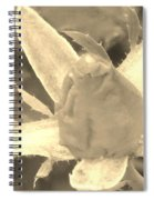 Sepia Rose Bud Spiral Notebook