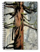 Sequoia And El Capitan Spiral Notebook