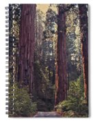 Sequoia National Park Spiral Notebook