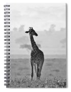 Serengeti Morning Spiral Notebook