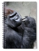 Serious Look Spiral Notebook