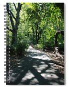 Shaded Paths In Central Park Spiral Notebook