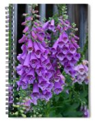 Shades Of Purple Spiral Notebook