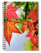 Shades Of Red Spiral Notebook