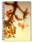 Shades Of Spring Spiral Notebook