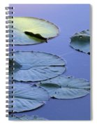 Shades Of Tranquility Spiral Notebook