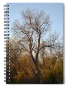 Shadow Cliff Tree Spiral Notebook