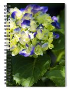 Shadowy Purple And White Emerging Hydrangea Spiral Notebook