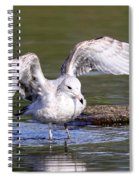 Shallows Spiral Notebook