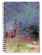 Shasta County Deer  Spiral Notebook
