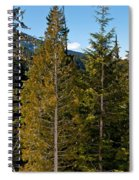 Sheared Trees Spiral Notebook