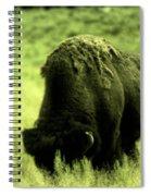 Shedding Spiral Notebook