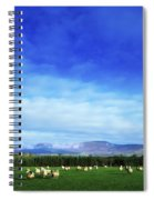Sheep Grazing In Field County Wicklow Spiral Notebook