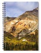 Sheep Mountain Along Glenn Highway Spiral Notebook