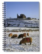 Sheep On A Snow Covered Landscape In Spiral Notebook