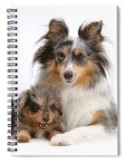 Sheepdog With Puppy Spiral Notebook