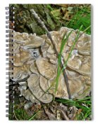 Shelf Fungus - Grifola Frondosa Spiral Notebook