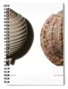 Shell Line Systems Spiral Notebook