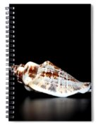 Shell On Leather 2 Spiral Notebook