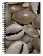 Shell Sigay 1 Spiral Notebook