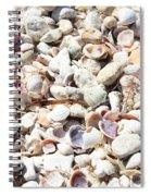 Shells Spiral Notebook