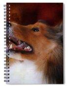 Sheltie II Spiral Notebook