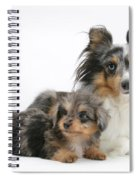 Shetland Sheepdog With Pup Spiral Notebook