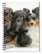 Shetland Sheepdog With Puppies Spiral Notebook