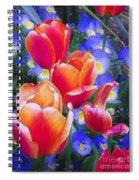 Shining Bright Spiral Notebook