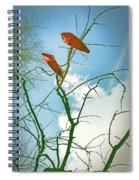 Shoes In The Sky Spiral Notebook