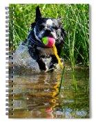 Shoreline Conditioning Spiral Notebook