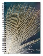 Wood Duck Feather Spiral Notebook