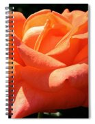 Shreveport Rose Spiral Notebook