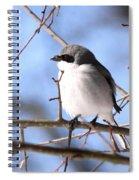 Shrike - Lonely Spiral Notebook