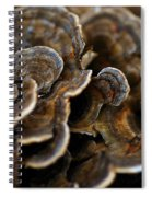 Shrooms Abstracted Spiral Notebook
